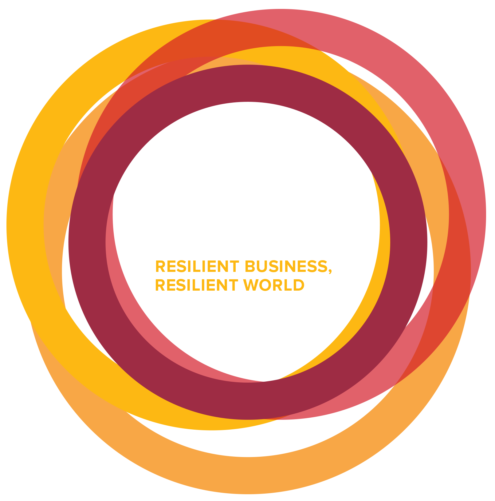 BSR Conference 2015: Resilient Business, Resilient World; November 3-5, 2015, San Francisco